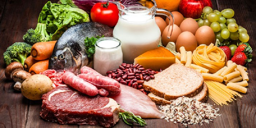 Protein – Rich Foods That Build Your Muscle